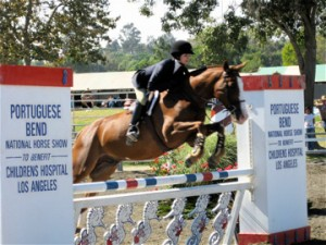 VSS sponsors Portuguese Bend Horse Show benefitting Children's Hospital of LA